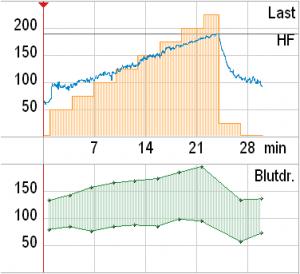 Typischer Verlauf von Herzfrequenz (blau) und Blutdruck (grün) unter Belastung (orange) bei einem gesunden, leistungsfähigen Probanden.